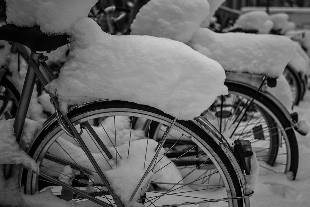 Bicycles in Winter Wonderland2