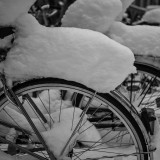 Bicycles in Winter Wonderland