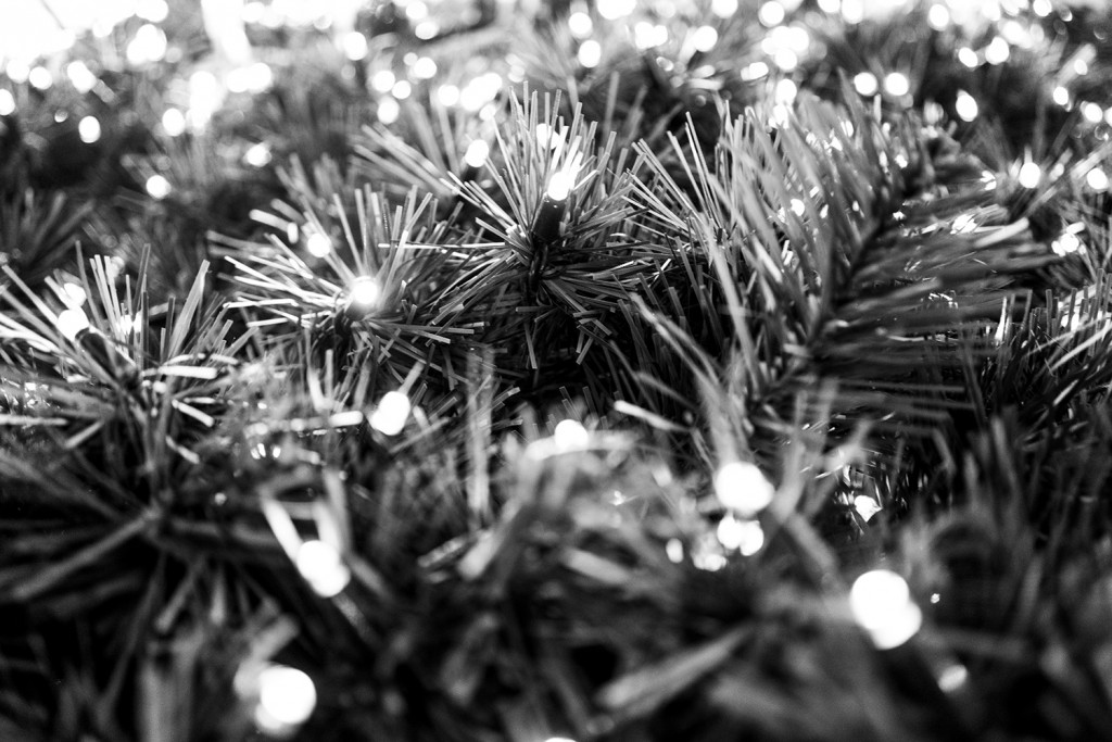 Wednesday, December 30th, 2015 in Frankfurt - Number 365 of 366mm Christmas tree shortly before the next decoration